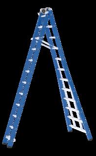 Skyworks Ladder Reform Premium 5402